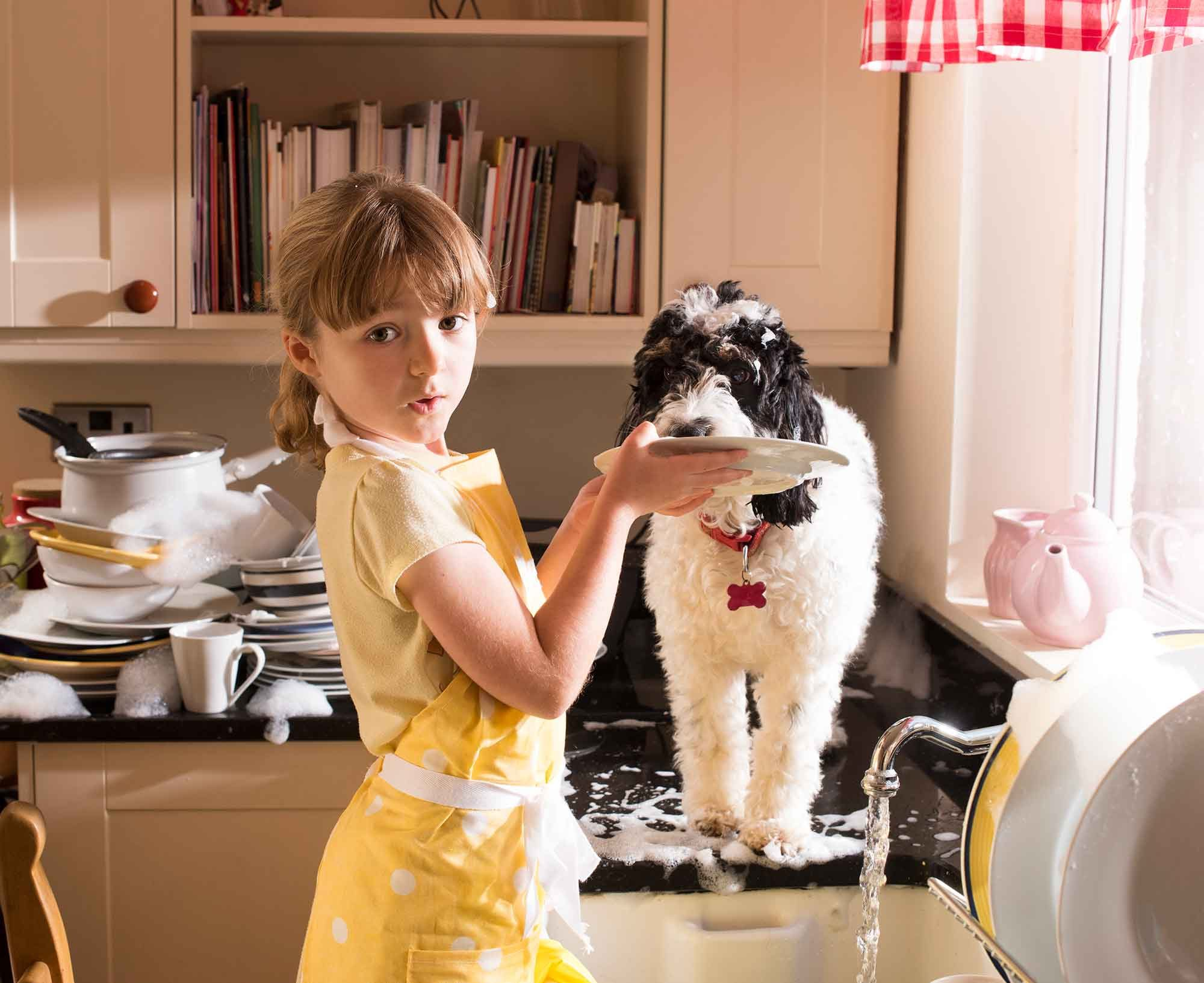 879a52febd7963 Protecting Your Pal from Indoor Pet Toxins